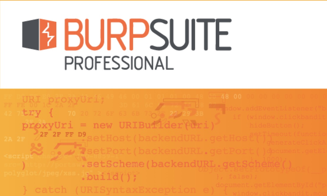 BurpSuite Pro 2020.11.3 For Windows